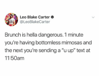 """Text, Dank Memes, and Next: Leo Blake Carter  @LeoBlakeCarter  Brunch is hella dangerous. 1 minute  you're having bottomless mimosas and  the next you're sending a """"u up"""" text at  11:50am (@leoblakecarter) this may be the whitest thing I've ever read"""