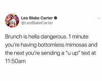 """Brunch is scary: Leo Blake Carter O  @LeoBlakeCarter  Brunch is hella dangerous. 1 minute  you're having bottomless mimosas and  the next you're sending a """"u up"""" text at  11:50am Brunch is scary"""