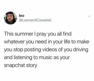 Please stop: leo  @LeonardCowalski  This summer I pray you all find  whatever you need in your life to make  you stop posting videos of you driving  and listening to music as your  snapchat story Please stop