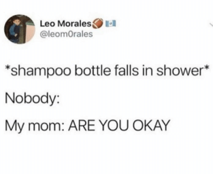 Shower, Okay, and Mom: Leo Morales  @leomOrales  *shampoo bottle falls in shower*  Nobody:  My mom: ARE YOU OKAY