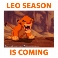 The Lion is coming! Make your way.: LEO SEASON  f LeoThing zodiacthingcom https://zodiacthing.com  IS COMING The Lion is coming! Make your way.