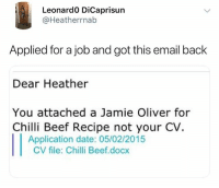 Follow @lolmynegga for the funniest memes on IG 😂💯: Leonard0 DiCaprisun  @Heatherrnab  Applied for a job and got this email back  Dear Heather  You attached a Jamie Oliver for  Chilli Beef Recipe not your CV.  Application date: 05/02/2015  CV file: Chilli Beef.docx Follow @lolmynegga for the funniest memes on IG 😂💯