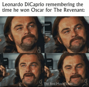 Remember those DiCaprio-Oscar memes?  IG: Instagram.com/thebestmovielinesofficial: Leonardo DiCaprio remembering the  time he won Oscar for The Revenant:  The Best Movie Lmes Remember those DiCaprio-Oscar memes?  IG: Instagram.com/thebestmovielinesofficial