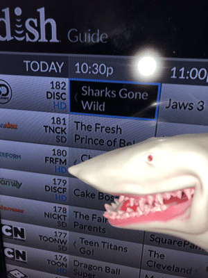 Fresh, Parents, and Prince: LES Guide  11:00  TODAY 10:30p  182  HD  181 The Fresh  Sharks Gone  Wild  Jaws 3  DISC  TNCK The Fresh  SD Prince of Bel  180%  FRFM  179  drrilyDISCF Cake Bos  HD  178  NİCKT, the Fa  SD Parents  SquareP  N TOONW <Teen Titans The  SD Go!  Cleveland  176  TOON Dragon Ball  D Super me_irl