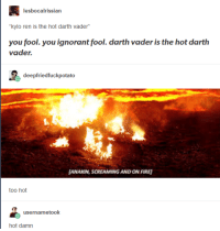 Advice, Darth Vader, and Fire: lesbocalrissian  you fool. you ignorant fool. darth vader is the hot darth  vader.  deepfriedfuckpotato  ANAKIN, SCREAMING AND ON FIRE  too hot  usernametook advice-animal:  [calling 911]