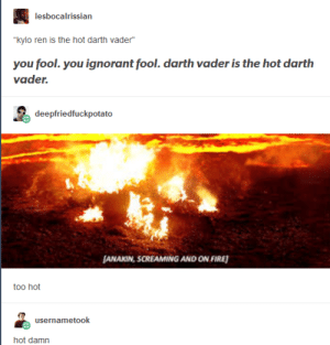 Darth Vader, Fire, and Ignorant: lesbocalrissian  you fool. you ignorant fool. darth vader is the hot darth  vader.  deepfriedfuckpotato  ANAKIN, SCREAMING AND ON FIRE  too hot  usernametook [calling 911]