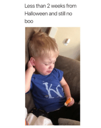Boo, Halloween, and Girl Memes: Less than 2 weeks from  Halloween and still no  boo i literally felt this :( via: @kate.luty
