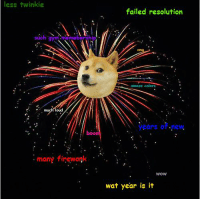 Dank, Wat, and Fireworks: less twinkie  failed resolution  such gym rahip  moze colors  much loud  ears o .new.  boom  many firework  WOW  wat year is it wow! such new year! lets bashe cate 2k17! happy new year!
