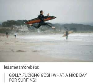 Fucking, Nice, and A Picture: lessmetamorebeta;  GOLLY FUCKING GOSH WHAT A NICE DAY  FOR SURFING! I rarely laugh out loud at a picture