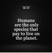 <3: Lessons Taught  By LIFE  Humans  are the only  species that  pay to live on  the planet. <3