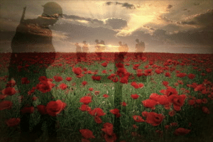 Lest we forget: Lest we forget