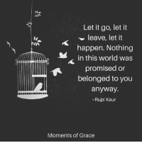 <3: Let it go, let it  leave, let it  happen. Nothing  in this world was  promised or  belonged to you  anyway.  Rupi Kaur  Moments of Grace <3