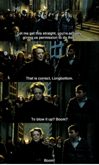 Memes, 🤖, and Boom Boom: Let me get this straight, you're actually  giving us permission to do this?  That is correct, Longbottom.  To blow it up? Boom?  Boom Harry Potter