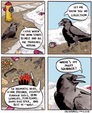 Love, Omg, and Tumblr: LET ME  SHOW YOU MY  COLLECTION  I LOVE WHEN  THE SNOW STARTS  TO MELT AND ALL  THE TREASURES  APPEAR  as  WHERE'S MY  JIGGLY  SQUIBBLER?  54 AROMATIC NUBS,  A FINE PREENER, ASSoRTED  FLAVOUR DISCS. BEAK  LOVELIES, FLIM-FLAMS,  SHINY POKE-STICK, AND  BEST oF-WAIT...  FALSEKNEES.CoM O2018 omg-images:  One bird's treasure [OC]