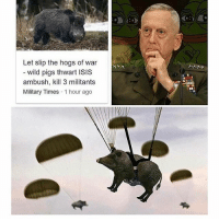 America, Funny, and Instagram: Let slip the hogs of war  wild pigs thwart ISIS  ambush, kill 3 militants  Military Times 1 hour ago Hahaha. PC: @the_typical_liberal 🔴www.TooSavageForDemocrats.com🔴 JOINT INSTAGRAM: @rightwingsavages Partners: 🇺🇸👍: @The_Typical_Liberal 🇺🇸💪@theunapologeticpatriot 🇺🇸 @DylansDailyShow 🇺🇸 @keepamerica.usa 🇺🇸@Raised_Right_ 🇺🇸@conservative.female 😈 @too_savage_for_liberals 🇺🇸 @Conservative.American DonaldTrump Trump 2A MakeAmericaGreatAgain Conservative Republican Liberal Democrat Ccw247 MAGA Politics LiberalLogic Savage TooSavageForDemocrats Instagram Merica America PresidentTrump Funny True SecondAmendment
