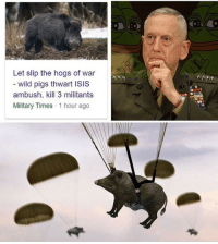 Isis, Wild, and Military: Let slip the hogs of war  wild pigs thwart ISIS  ambush, kill 3 militants  Military Times 1 hour ago  ただ