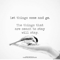 Life, Memes, and 🤖: Let things come and go  The things that  are meant to stay  will stay.  www.PRINCEEA.coM You can't force anything to stay in your life. Motivation Inspire Positive Greatness PrinceEa Gratefulness Liveinthemoment