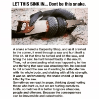 Jealous, Life, and Memes: LET THIS SINK IN... Dont be this snake.  @DailyDose  A snake entered a Carpentry Shop, and as it crawled  to the corner, it went through a saw and hurt itself a  little bit. At that time he turned and bit the saw, and  biting the saw, he hurt himself badly in the mouth.  Then, not understanding what was happening to him  and thinking that saw was attacking him, he decided  to roll around the saw as if wanting to suffocate him  with his whole body, and shaking with all his strength.  It was so, unfortunately, the snake ended up being  killed by the saw.  Sometimes we react in anger, thinking about hurting  those who hurt us, but we are hurting ourselves.  In life, sometimes it is better to ignore situations,  people and offenses. Because the consequences  can be irreversible and catastrophic. This is what happens to little snakes . . . jealous quote inspiration dailydose
