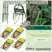 encryption: LETRAPPOLE PIU PERICOLOSE  online  TODAY  Messages you send to this chat and cals are now sec  with end to-end encryption. Tap for more info  1 UNREAD MESSAGE  Hey  1003 PM  Gabry PIC-COLLAGE  PIC COLLAGE