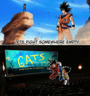 Of course: LETS FIGHT SOMEWHERE EMPTY.  CATS  MEOW PLAYING IN THEATERS Of course