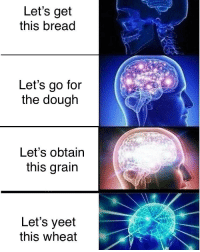 Memes, Gluten, and 🤖: Let's get  this bread  Let's go for  the dough  Let's obtain  this grain  Let's yeet  this wheat let's grab this gluten