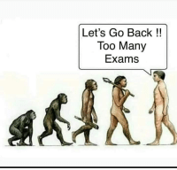 Back, Let's, and Lets Go: Let's Go Back !!  Too Many  Exams