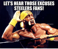 Steeler Fans: LET'S HEAR THOSE EXCUSES  STEELERS FANS!  EMES