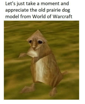 They had some good models back then: Let's just take a moment and  appreciate the old prairie dog  model from World of Warcraft They had some good models back then
