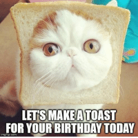 Let's make a toast for your birthday today.: LETS MAKEATOAST  FOR YOURBIRTHDAY TODAY  imgflip.com Let's make a toast for your birthday today.