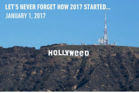 The highest point of the year. https://9gag.com/tag/hollywood?ref=fbpic: LET'S NEVER FORGET HOW 2017 STARTED  JANUARY 1, 2017  HOLLYWeeD The highest point of the year. https://9gag.com/tag/hollywood?ref=fbpic