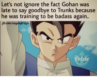 Gohan Fans Rejoice!!  We know what a Demi-Saiyan is capable of now thanks to Future Trunks...: Let's not ignore the fact Gohan was  late to say goodbye to Trunks because  he was training to be badass again.  Pride Gohan Fans Rejoice!!  We know what a Demi-Saiyan is capable of now thanks to Future Trunks...