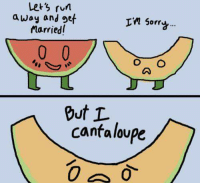 Let's get married: Let's run  away and get  In Sorri  marriedl  O O  But L  cantaloupe Let's get married