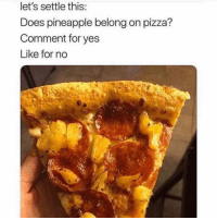 Anaconda, Memes, and Pizza: let's settle this  Does pineapple belong on pizza?  Comment for yes  Like for no 100% belongs there. Shits delicious🤤 What y'all think?