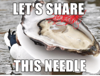 Bad Advice Oyster: LETS SHARE  THIS NEEDLE Bad Advice Oyster