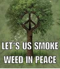 """Let us smoke weed in peace! :-): LETS US SMOKE  WEED IN PEACE  EE  KC  OA  ME  SP  SN  ,"""" U I  SE Let us smoke weed in peace! :-)"""