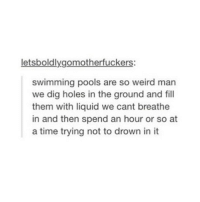 Memes, Weird, and Holes: letsboldlygomotherfuck  swimming pools are so weird man  we dig holes in the ground and fill  them with liquid we cant breathe  in and then spend an hour or so at  a time trying not to drown in it But CANNON BALLS are so fun 🤪