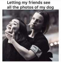 Friends, Memes, and All The: Letting my friends see  all the photos of my dog Here you go! Please enjoy the slideshow of my dog. Via @dogpartying