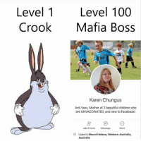 This is how Mafia works: Level 1  Crook  Level 100  Mafia Boss  NDER  Karen Chungus  Anti Vaxx, Mother of 2 beautiful children who  are UNVACCINATED, and new to Facebook!  0+  Add Friend  Message  More  Lives in Mount Helena, Western Australia,  Australia This is how Mafia works