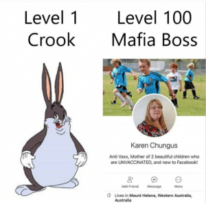 This is how Mafia works by Internal_Blaze MORE MEMES: Level 1  Crook  Level 100  Mafia Boss  NDER  Karen Chungus  Anti Vaxx, Mother of 2 beautiful children who  are UNVACCINATED, and new to Facebook!  0+  Add Friend  Message  More  Lives in Mount Helena, Western Australia,  Australia This is how Mafia works by Internal_Blaze MORE MEMES
