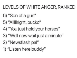"You're god danged right fella.: LEVELS OF WHITE ANGER, RANKED  6) ""Son of a gun""  5) ""Allright, bucko""  4) ""You just hold your horses""  3) ""Well now wait just a minute""  2) ""Newsflash pal""  1) ""Listen here buddy"" You're god danged right fella."