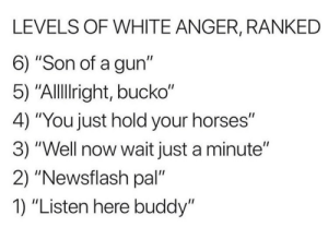 "Horses, Memes, and Computer: LEVELS OF WHITE ANGER, RANKED  6) ""Son of a gun""  5) ""Alllight, bucko""  4) ""You just hold your horses""  3) ""Well now wait just a minute""  2) ""Newsflash pal""  1) ""Listen here buddy"" random memes starting from July 2018 that are taking up 12 gigs on my computer #2"