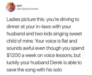 Dank, Driving, and Singing: Levi  @levijamestweets  Ladies picture this: you're driving to  dinner at your in-laws with your  husband and two kids singing sweet  child of mine. Your voice is flat and  sounds awful even though you spend  $1200 a week on voice lessons, but  luckily your husband Derek is able to  save the song with his solo This sounds oddly specific