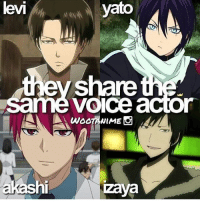 True anime fans and otakus follow @otakucentre !😍The perfect page for people who truly like anime, all your needs are on that page! Follow now 🍃 . . Credit @wootanime: levi  yato  ev share  voice actor  akash  hi  zaya True anime fans and otakus follow @otakucentre !😍The perfect page for people who truly like anime, all your needs are on that page! Follow now 🍃 . . Credit @wootanime