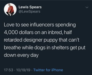 Dogs, Iphone, and Love: Lewis Spears  @LeWSpears  Love to see influencers spending  4,000 dollars on an inbred, half  retarded designer puppy that can't  breathe while dogs in shelters get put  down every day  17:53 10/19/19 Twitter for iPhone Practices are absolutely barbaric in this day and age