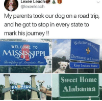 This boye traveling all around america: @lexeeleach  My parents took our dog on a road trip,  and he got to stop in every state to  mark his journey!!  Welcome to  OLo  WELCOME TO  Bienvenue en Louisiane  Keep Louisiana Beautiful  Sweet Home  Alabama  RIDA  S YoU This boye traveling all around america
