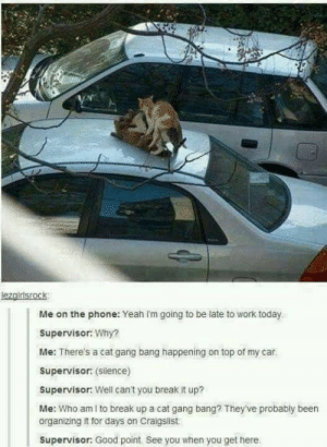 Fuck: lezgirisrock  Me on the phone: Yeah Im going to be late to work today  Supervisor: Why?  Me: There's a cat gang bang happening on top of my car.  Supervisor: (Silence)  Supervisor: Well can't you break it up?  Me: Who am I to break up a cat gang bang? They've probably been  organizing it for days on Craigslist  Supervisor: Good point. See you when you get here Fuck