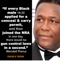 "Now I like this idea!: ""lf every Black  male 18-25  applied for a  conceal & carry  permit,  and thern  joined the NRA  in one day,  there would be  gun control laws  in a second.""  Wendell Pierce  DAILY KOS Now I like this idea!"