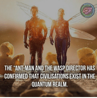 "Internet, Memes, and Guess: LF  THE ""ANT MAN AND THE WASP DIRECTOR HAS  CONFIRMED THAT CIVILISATIONS EXIST IN THE  QUANTUM REALM. 