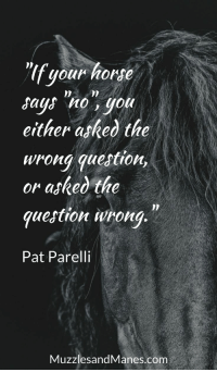 """Home, Horse, and Com: lf your home  says no, you  either asked the  wrona question,  or asked the  quejtion urong  Pat Parelli  MuzzlesandManes.com """"If your horse says 'no', you either asked the wrong question, or asked the question wrong."""" - Pat Parelli"""