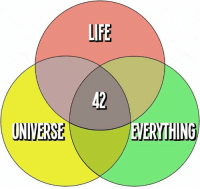 Lfe: LFE  42  UNIVERSEEVERYTHING